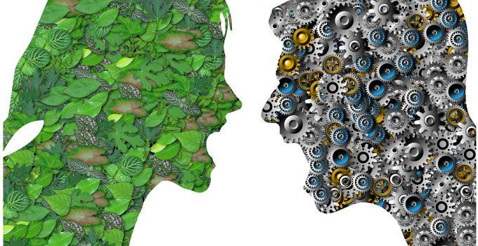 conflitto ambiente sviluppo
